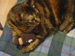 Goomba Being Squished by awesome Kitty!